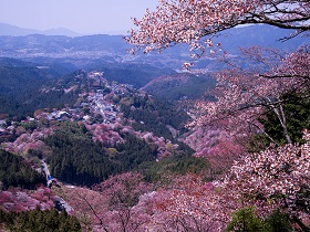 Experience beauty in towns of Nara